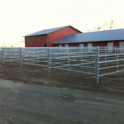 continuous-horse-fence